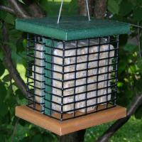 Songbird Essentials Recycled Poly Double Suet Bird Feeder