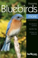 Bird's Choice Enjoying Bluebirds & More