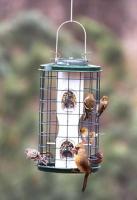 Varicraft 2 Quart Wild Bird Mixed Seed Bird Feeder with Cage