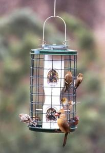 Wire Caged Feeders by Vari-Crafts