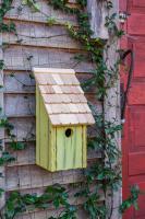 Heartwood Bluebird Bunkhouse Bird House - Green Apple
