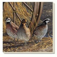Counter Art Game Birds Quail Coasters Set of 4