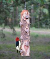 Songbird Essentials 6 Plug Suet Log Bird Feeder Without Perches