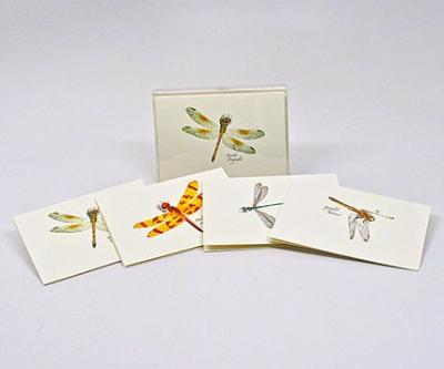 Steven M. Lewers & Associates Dragonfly & Damselfly Notecard Assortment II (4 each of 2 styles)