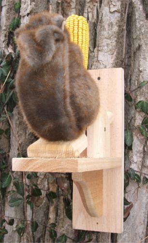Songbird Essentials See Saw Feeder