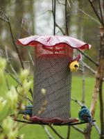 Bird's Choice 3 Quart Nyjer Bird Feeder - Red