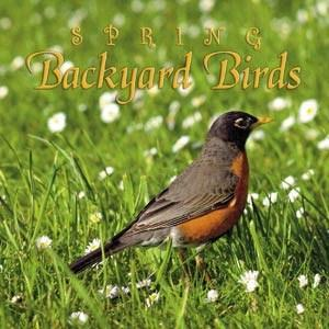 Naturescapes Spring Backyard Birds CD
