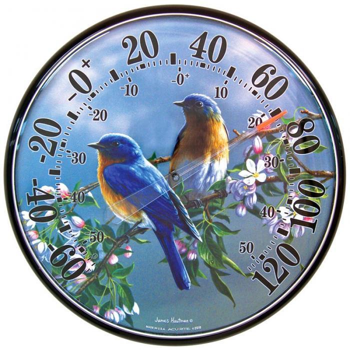 AcuRite James Hautman Bluebird Thermometer
