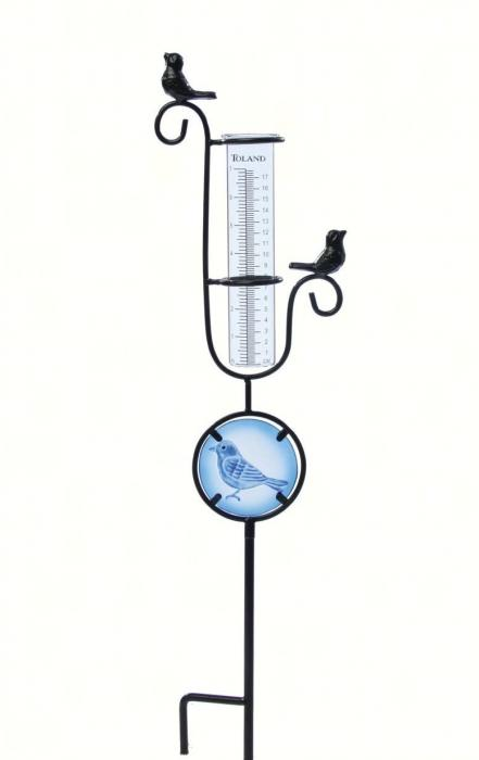 Toland Bird Rain Gauge on Stake