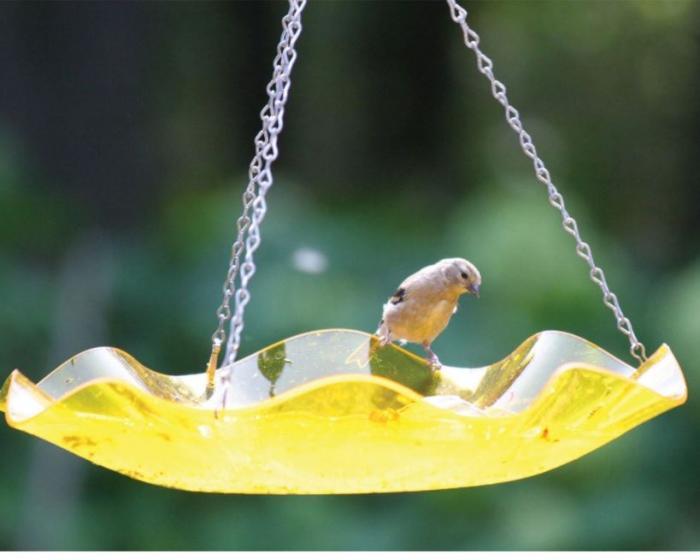 Bird's Choice Hanging Acrylic Bird Bath-Yellow