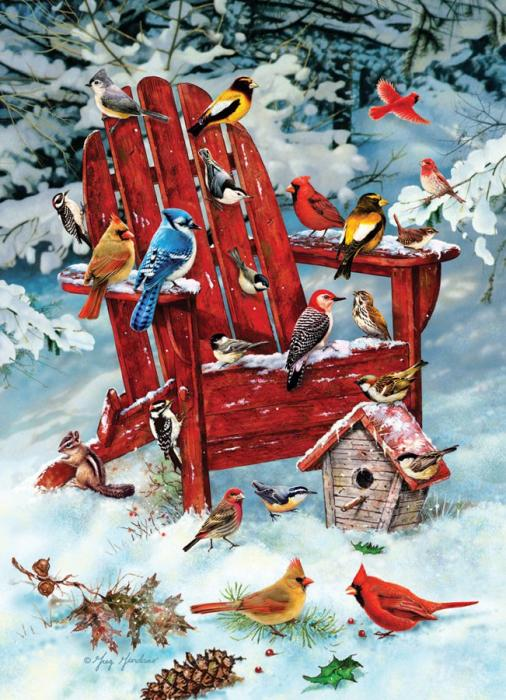 Outset Media Games Adirondack Birds 1000 piece Puzzle