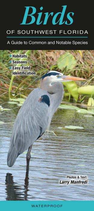 Quick Reference Publishing Birds of Southwest Florida