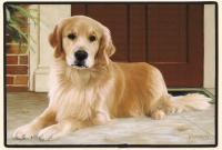 Fiddler's Elbow Golden Retriever Porch Doormat
