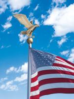Large Flagpole Eagle - Gold Bronze