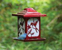 Homestead Hummingbird Decorative Bird Feeder