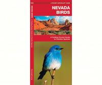 Waterford Nevada Birds