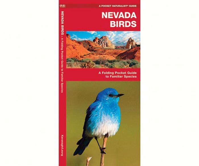 Waterford Nevada Birds