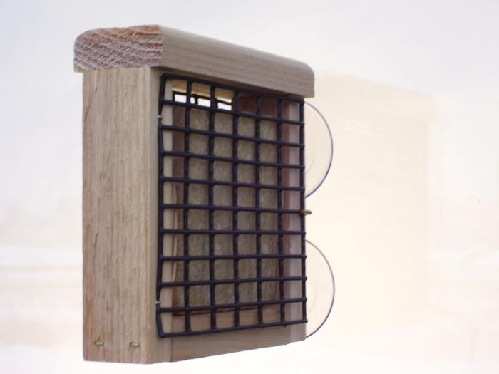 Birds Choice Suet Window Bird Feeder