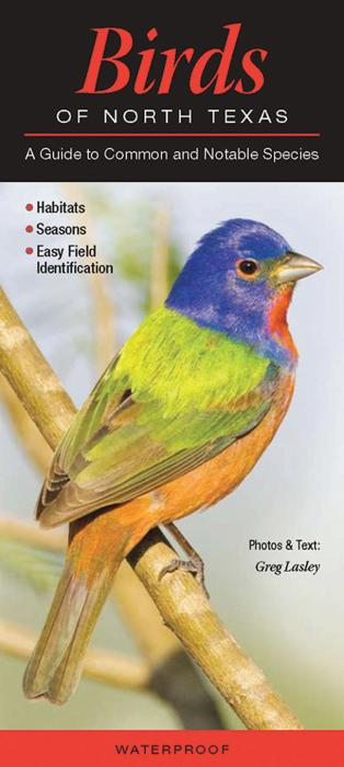 Quick Reference Publishing Birds of North Texas