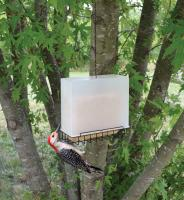 Songbird Essentials Suet Feeder Saver Feeder Large Bird Feeder