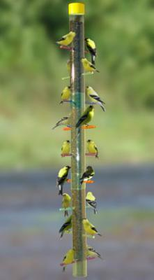 "S&K Expandable 36"" Rainbow Tube Finch Bird Feeder"