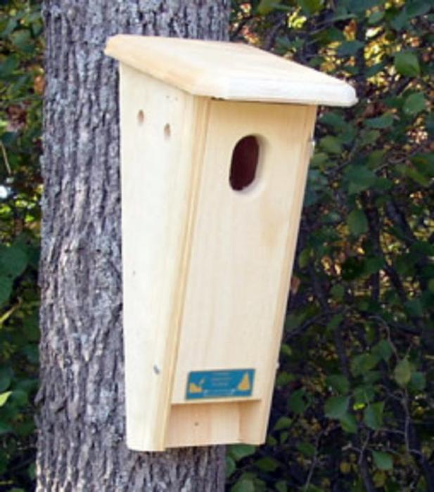 Slant-Front Bluebird Box