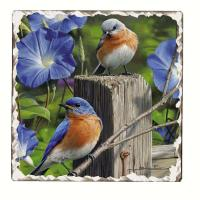 Counter Art Bluebirds Number 3 Single Tumbled Tile Coaster