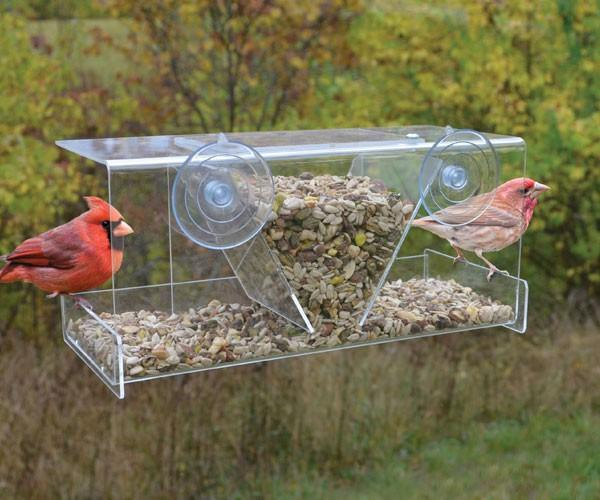 Songbird Essentials Clear View Deluxe Hopper Window Bird Feeder
