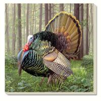 Counter Art Game Birds Turkey Coasters Set of 4