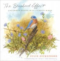 Houghton Mufflin The Bluebird Effect: Uncommon Bonds with Common Birds