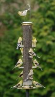 Aspects Large Thistle Tube Bird Feeder, Antique Brass
