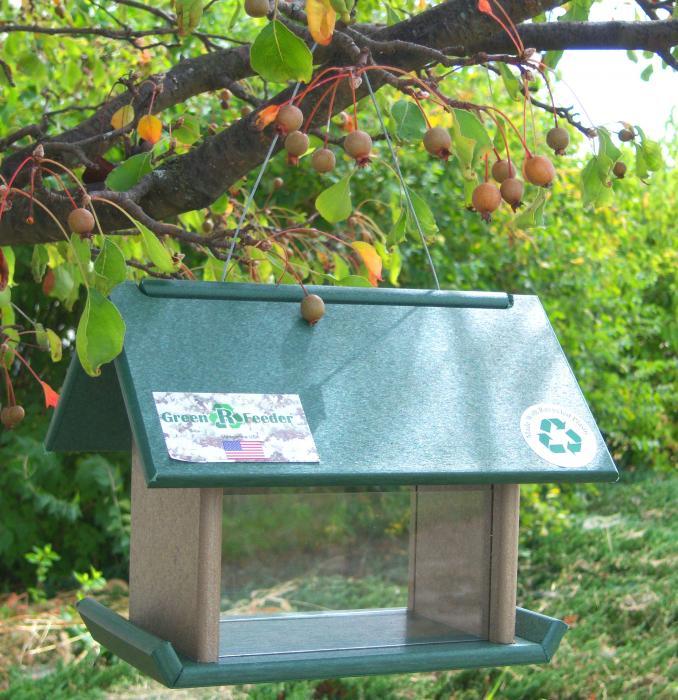Songbird Essentials Mealworm Bird Feeder Hunter/Drift