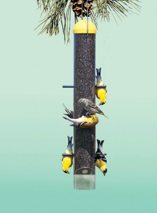 Perky Pet Upside Down Wild Finch Tube Bird Feeder