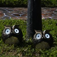 Smart Solar Solar Owl Accent, Set of 2
