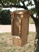 Songbird Cedar Ultimate Woodpecker Feeder