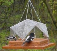 Songbird Essentials 12 x 12 Super Tray w Cover Bird Feeder