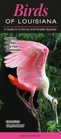 Quick Reference Publishing Birds of Louisiana