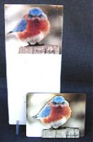 Songbird Essentials Memo Pad, Mad Bluebird