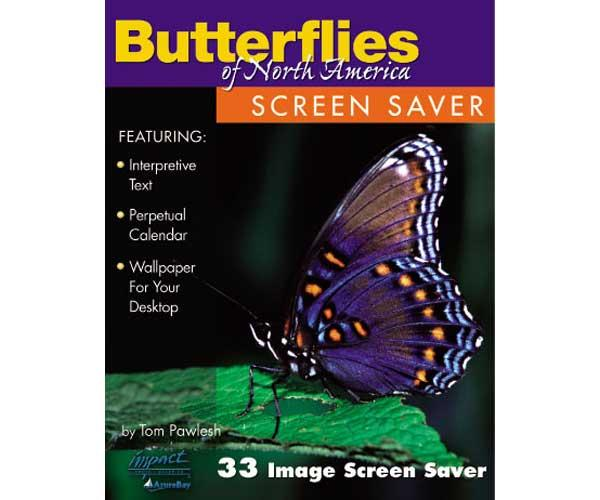 Impact Photographics Screen Saver Butterflies of North America