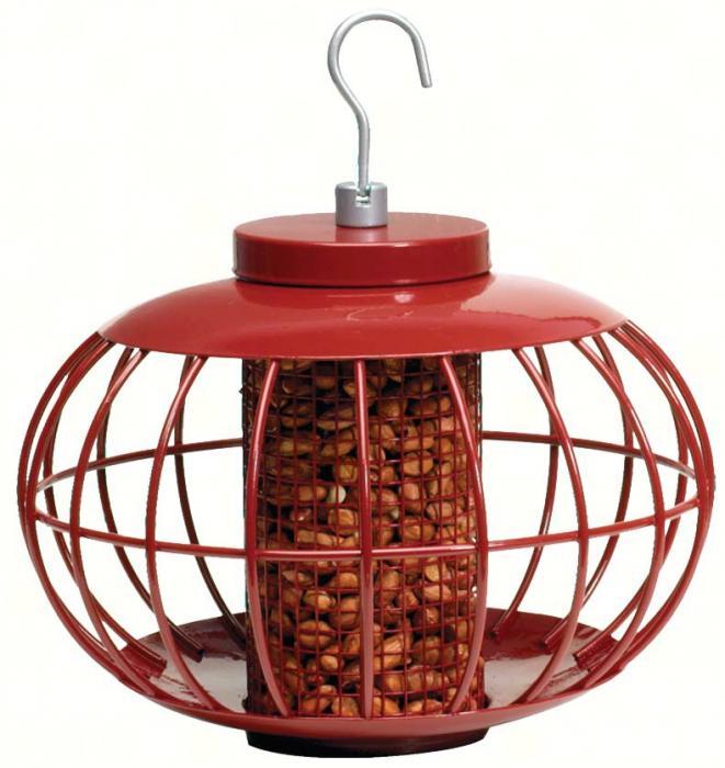 Gardman Lantern Peanut/Seed Feeder
