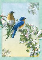 Tree Free Greetings Bluebird Branch Blank