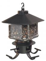 First Nature Clear Lantern Seed Selector Bird Feeder