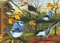 Outset Media Games Blue Jay & Friends Puzzle 1000 pc