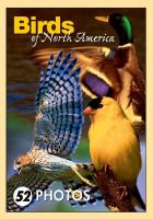 Impact Photographics Birds of N.A. Mini Playing Cards